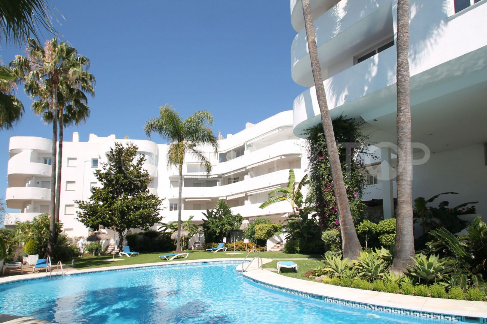 Great Apartment in Marbella Real
