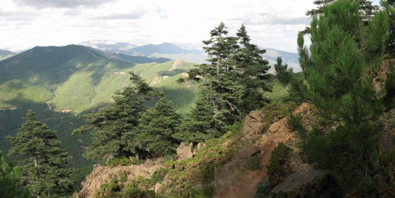 Panoramica-Sierra-Bermeja