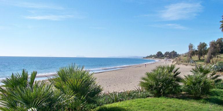 Playa-palmeritas