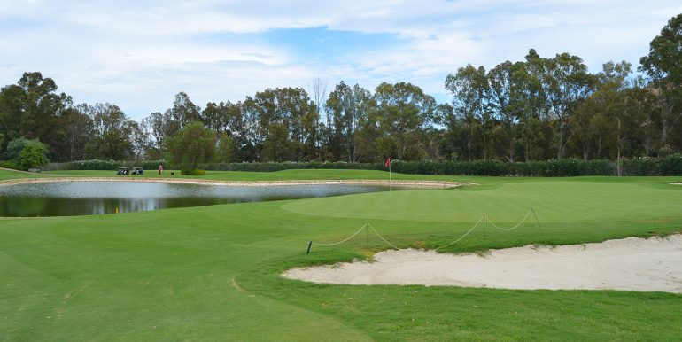 golf-1649219