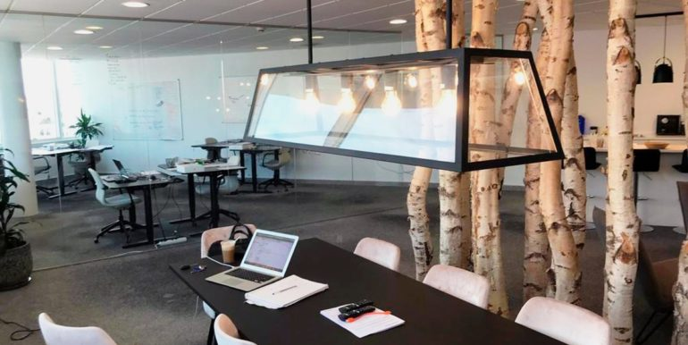 office-puerto-banus-norwegian-estates-2